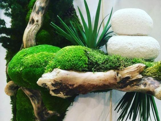 軽石で安定した植物の装飾