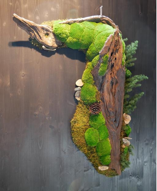 樹皮で安定した植えられた植物装飾