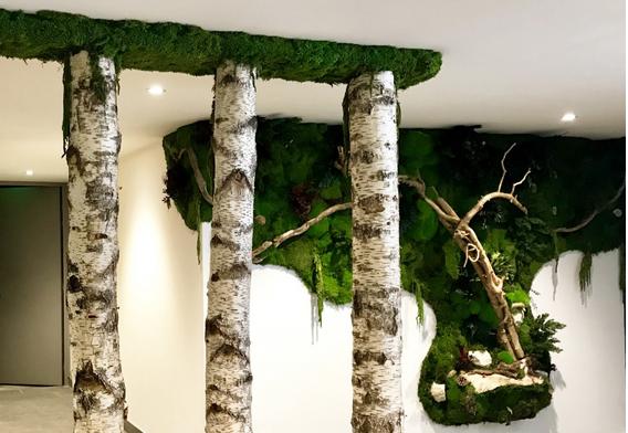 Samovar spaのメンテナンスなしの天然植物の壁