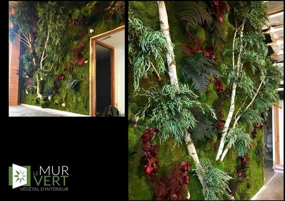 バレル&ペルティエでバーチの木と安定した植物壁