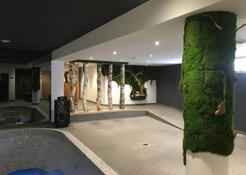 ホテルSamovarのスパで緑の壁