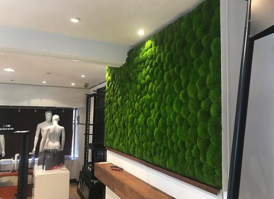 メリベルのミレースポーツショップでグリーンの壁の泡ボール