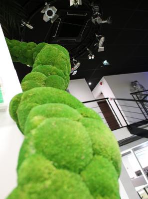 Le Mur Vertの工場はスカンジナビア品質プレステージから来ています