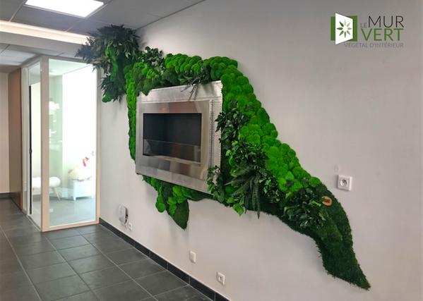 Imogroup Luxuryで植物を安定させた創作デザインの植栽アート