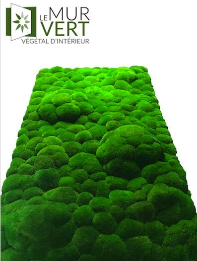 Atelier SMegèveが付いている泡の植物の壁