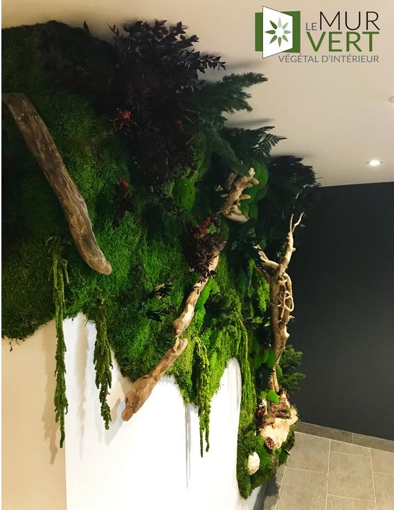 Savomar hotelの流木スパで複数の植物の壁