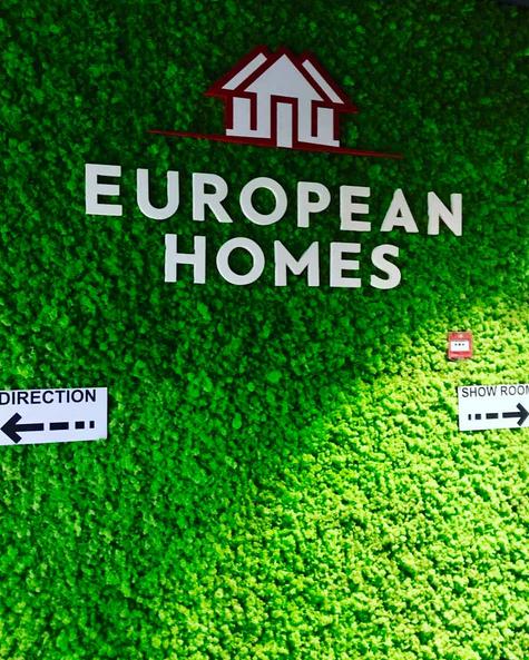 ヨーロッパの家アヌシーで緑の地衣の壁