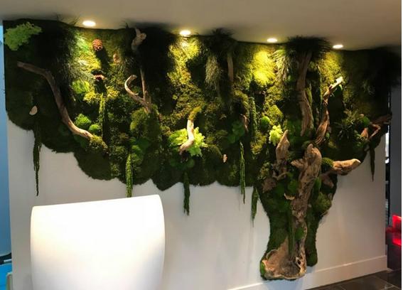 Lake Suitesで安定した植物壁