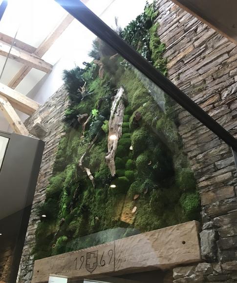 Restaurant la Braconneのための植物の壁緑階段