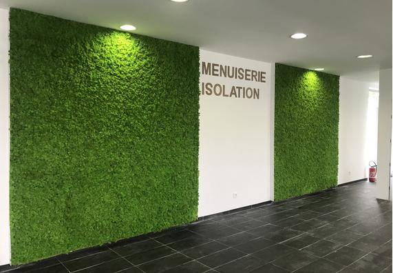 高密度スカンジナビア地衣類の植生と緑の壁