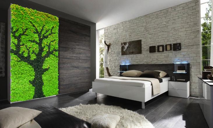 安定化地衣の植物壁アレルギーフリーメンテナンスフリー