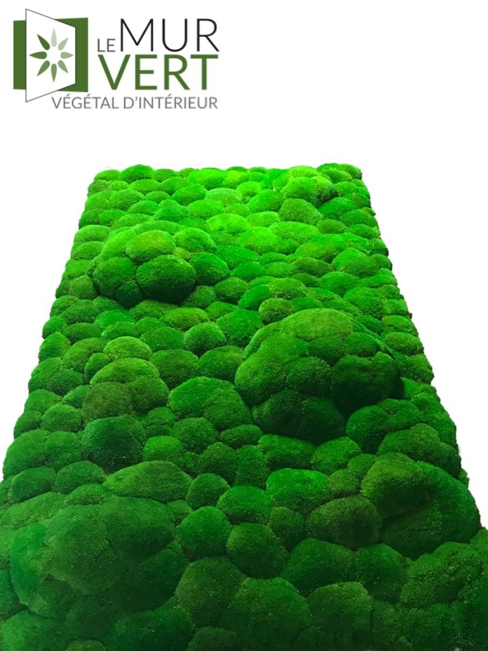 le mur vert mur boule de mousse stabilis sans entretien. Black Bedroom Furniture Sets. Home Design Ideas